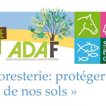 Table ronde «Agroforesterie: protéger la richesse de nos sols»