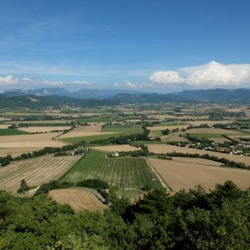 Formation Agroforesterie en Grandes Cultures