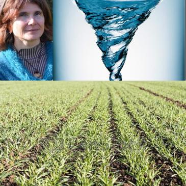 Il reste des places pour la formation «Traitement physique de l'eau en maraichage et grandes cultures» des 14-15-16 Janvier!!