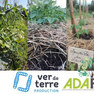 Formation «Expérimenter des méthodes Maraichage sur Sol  Vivant (MSV) sur sa ferme » avec François Mulet les 30-31 janvier et 1er février
