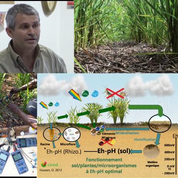 Formation «Apprendre à piloter ses sols et ses cultures via l'oxydo-réduction» avec Olivier Husson les 18 -19 février