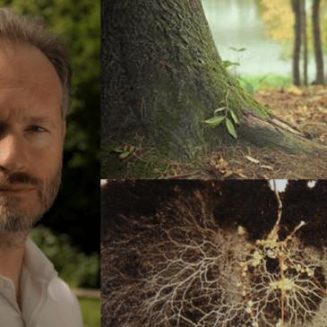 Formation «La Mycorhization, une symbiose au service des cultures: la comprendre pour la favoriser» avec Marc-André Sélosse les 13 et 14 février