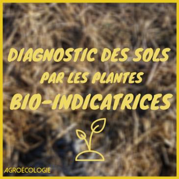 Le diagnostic des Sols par l'étude des plantes Bio-indicatrices, par Jeremy Rizoud